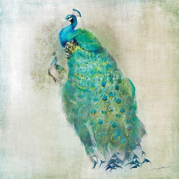 4 Single paper decoupage napkins classy design -447 Peacock Royal bird