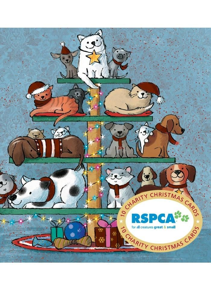 RSPCA Charity Christmas Card Pack Pawfect Presents