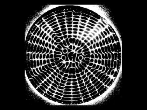 """PROGRAMA DESPERTOS -""""Os Construtores do Universo: Som, frequência e Ress..."""
