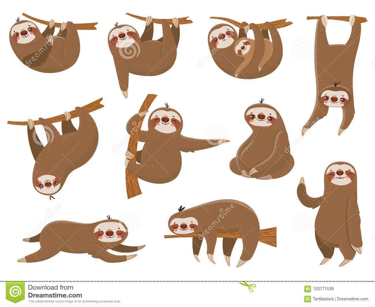 Cute Cartoon Sloths Rainforest animals, Cute animals