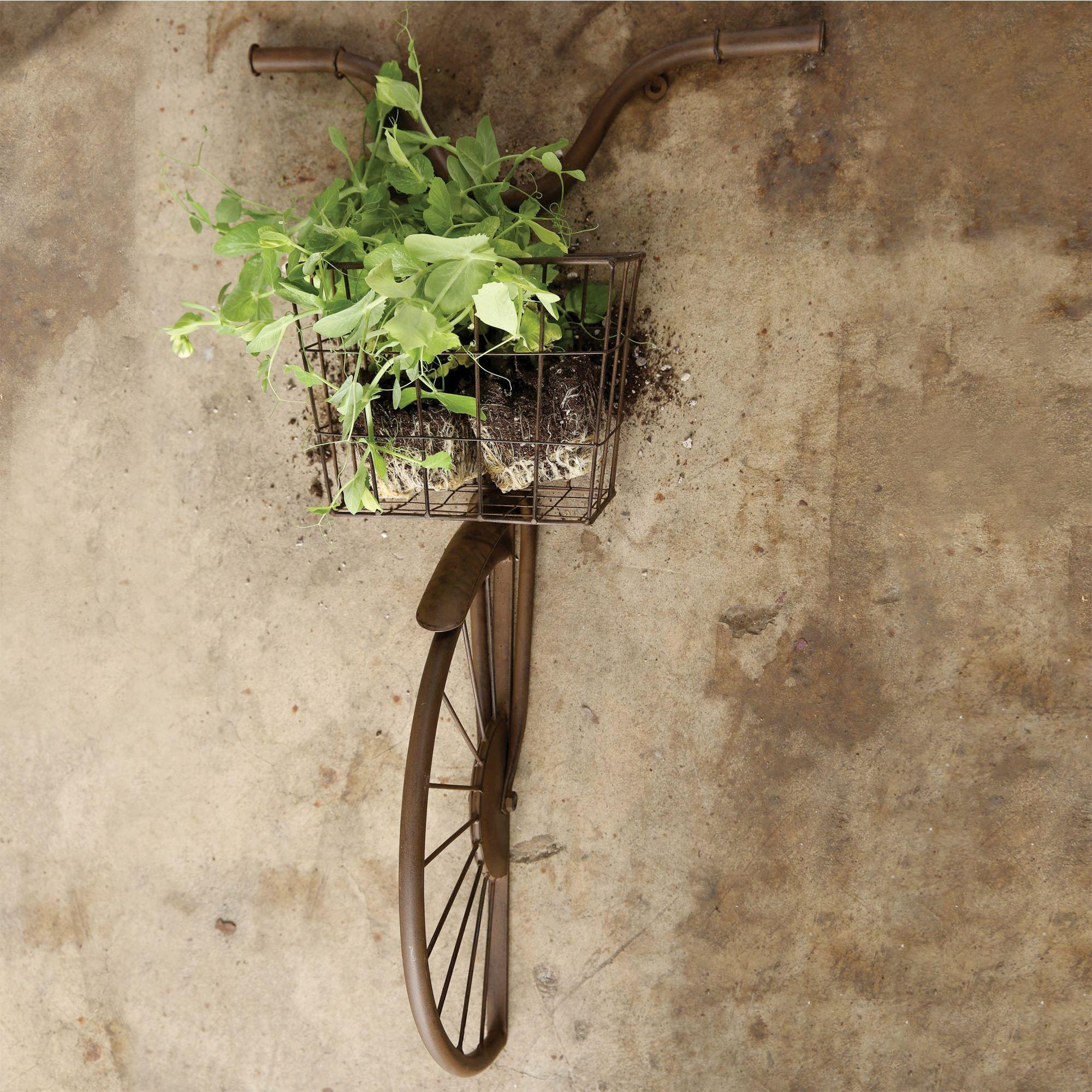 Hansen Bike with Basket Dimensional Metal Wall Sculpture | Baskets on wall, Basket wall decor ...