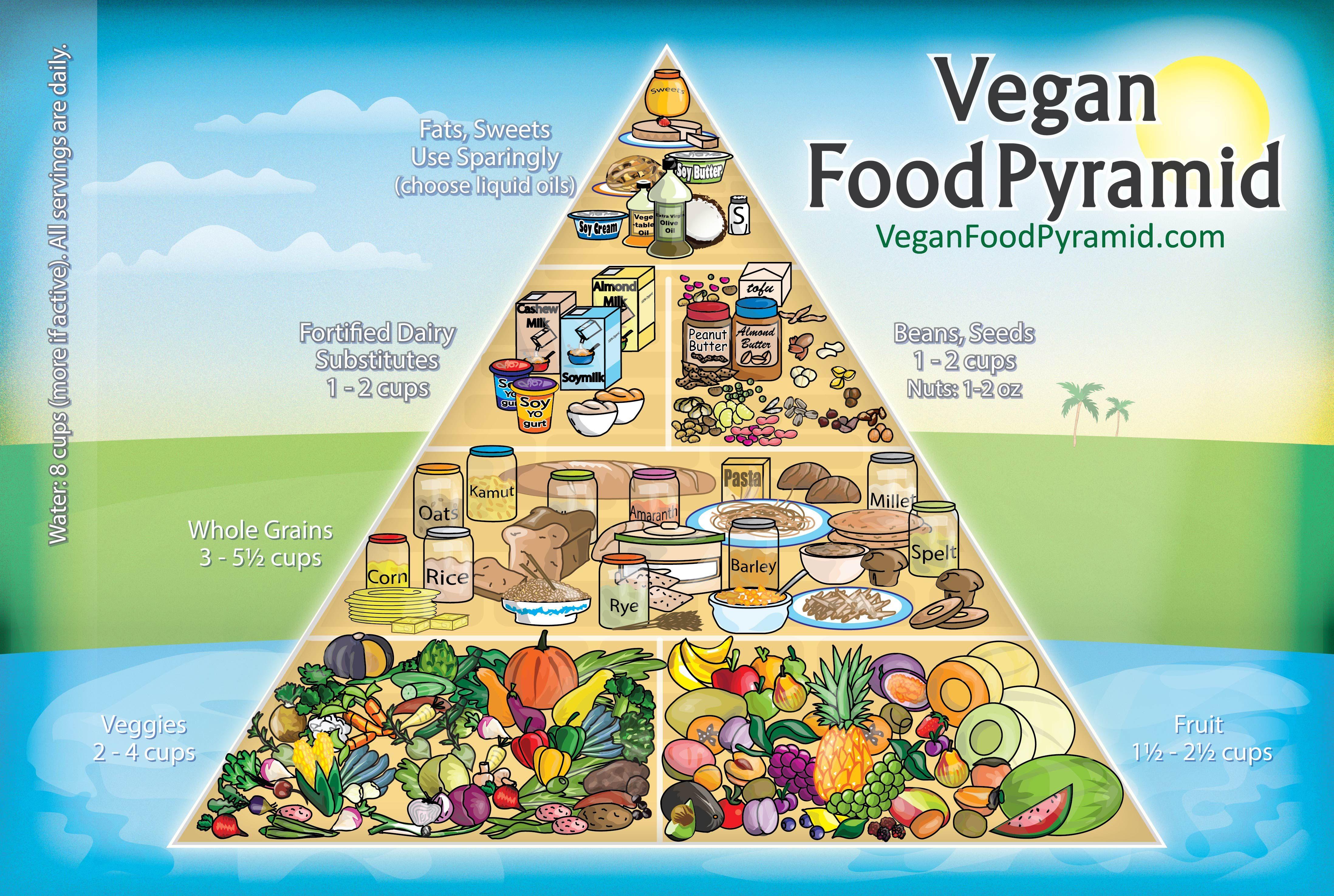 Image result for food pyramid 2018 Vegan food pyramid
