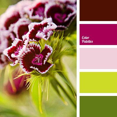 Color Palette No. 1020
