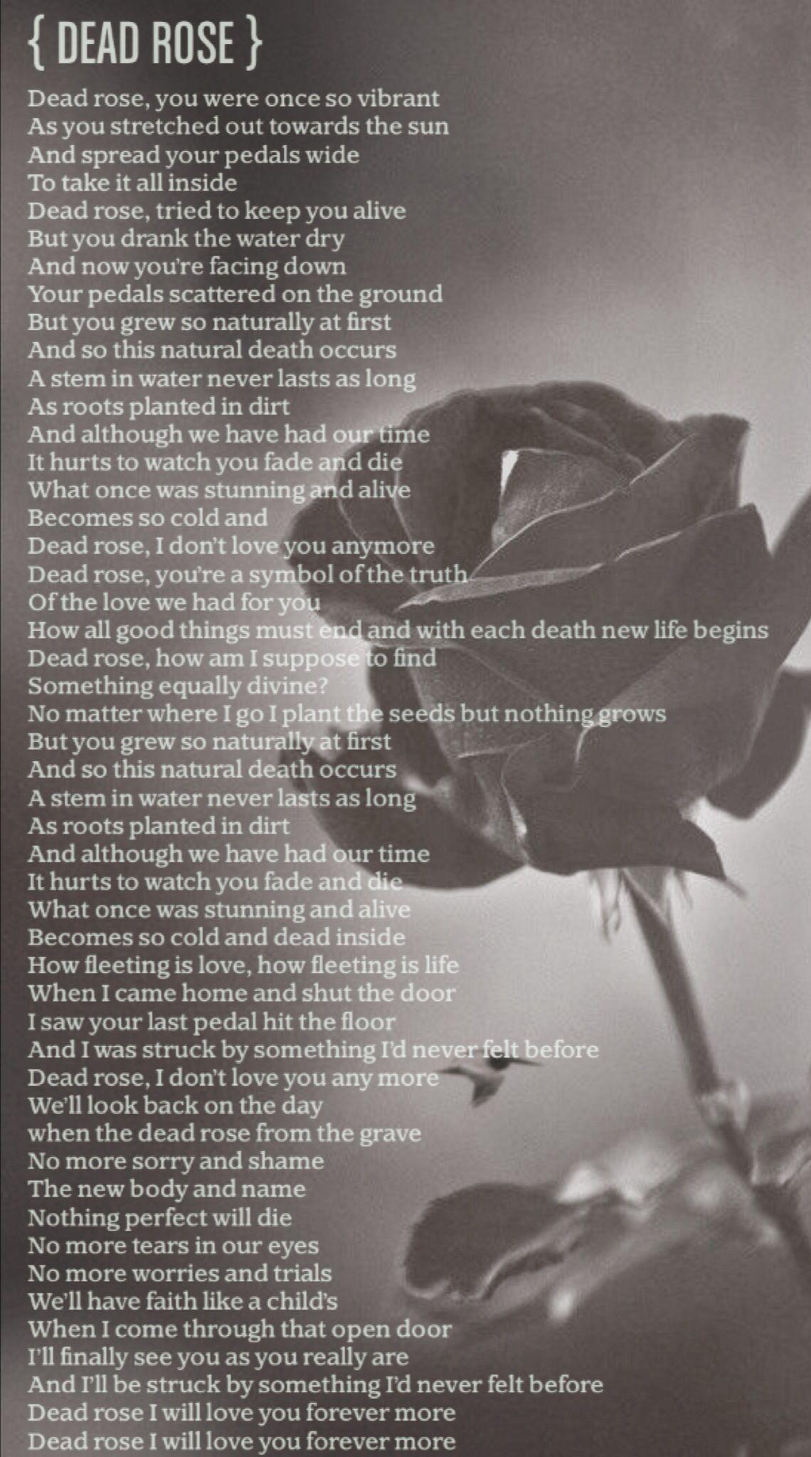 Dead Rose.