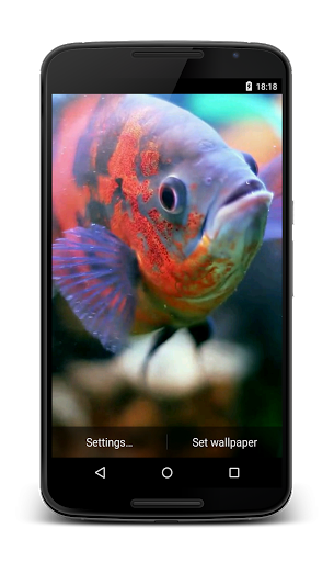 Aquarium 3D Video Wallpaper<p>The best video live wallpaper with realistic aquarium (fish tank) and colorful fish.<p>Check out our account for more beautiful free video live wallpapers!<br>We would appreciate if you rate our wallpaper.  http://Mobogenie.com