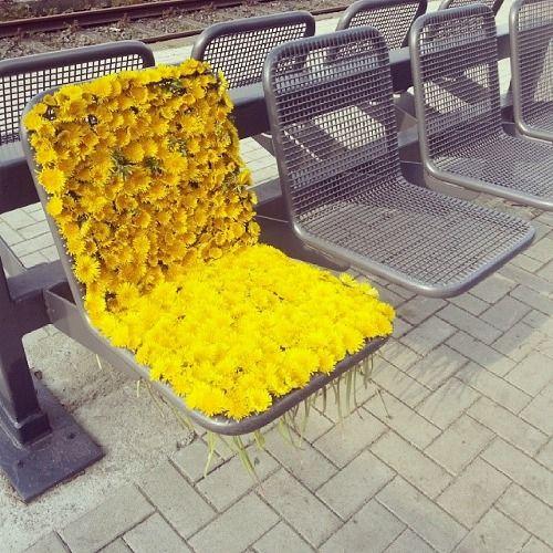 Auf Fahrradständer etc. Oder in Aufgebrochenes oben am Parkplatz #yellowaesthetic