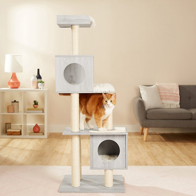 Frisco 62 In Modern Cat Tree Condo Natural Chewy Com In 2020 Modern Cat Tree Cat Tree Condo Modern Cat
