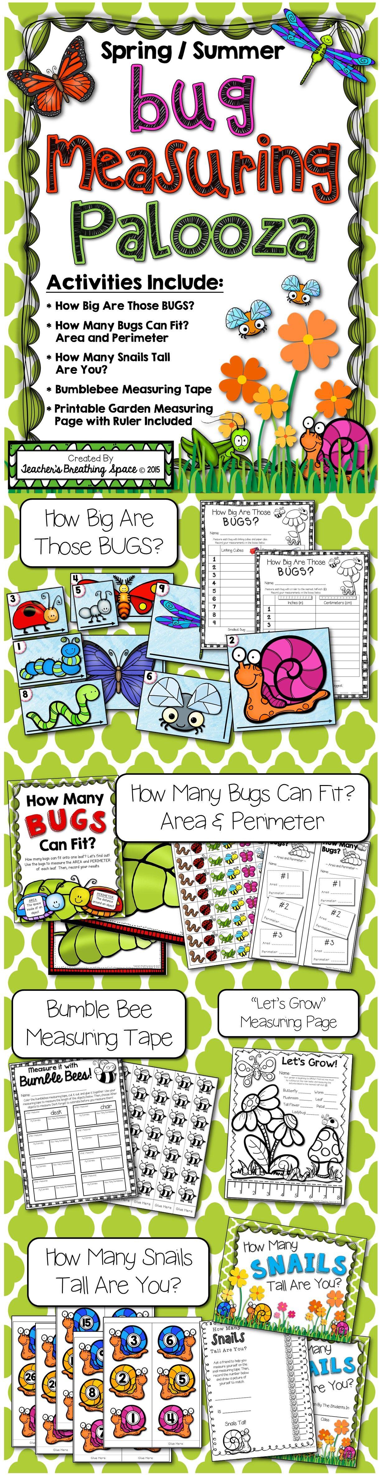 Summer Spring Measuring Bug Measuring Palooza Math