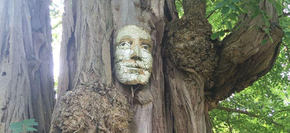 Woodland Garden - Hatfield House:
