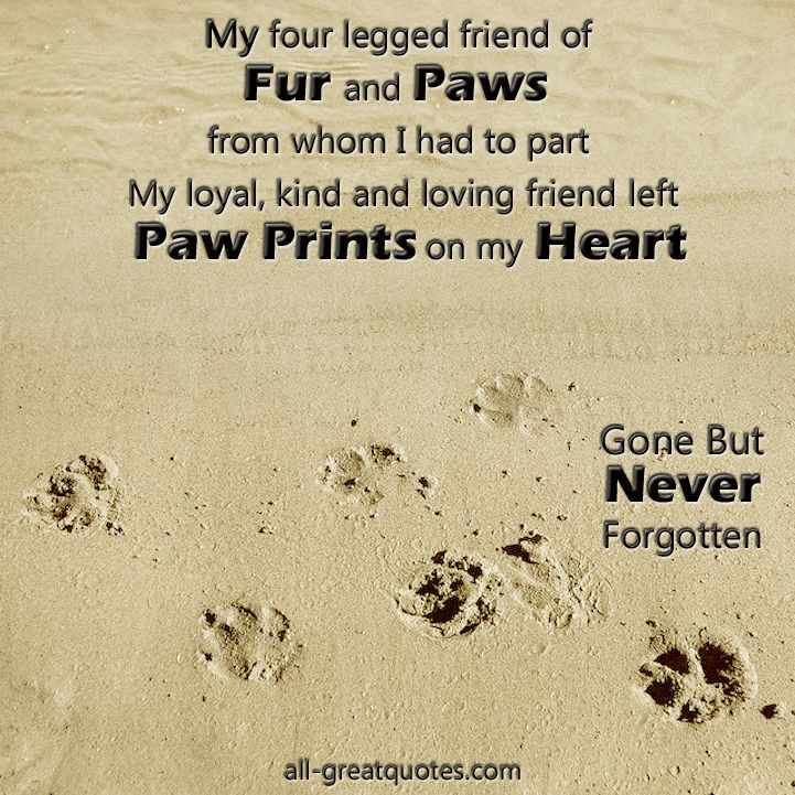 My Four Legged Friend Of Fur And Paws Pet Loss Famous Quotes Delectable Dog Loss Quotes