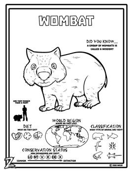 A Wombat coloring page | Zoo Wild Educational Resources | Pinterest ...