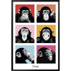 Art.com - The Chimp - Pop