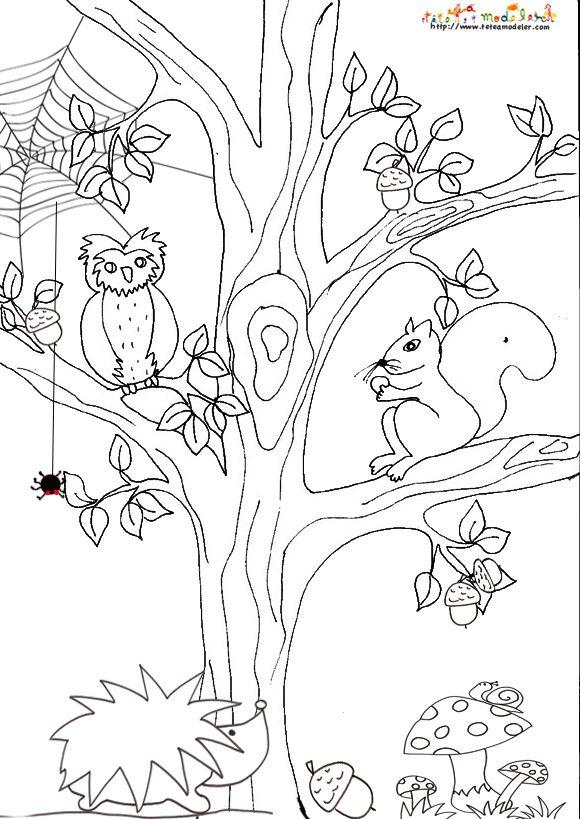 Coloriage automne colorier dessin imprimer d ti podzim pinterest coloriage dessin - Coloriage magique automne ...