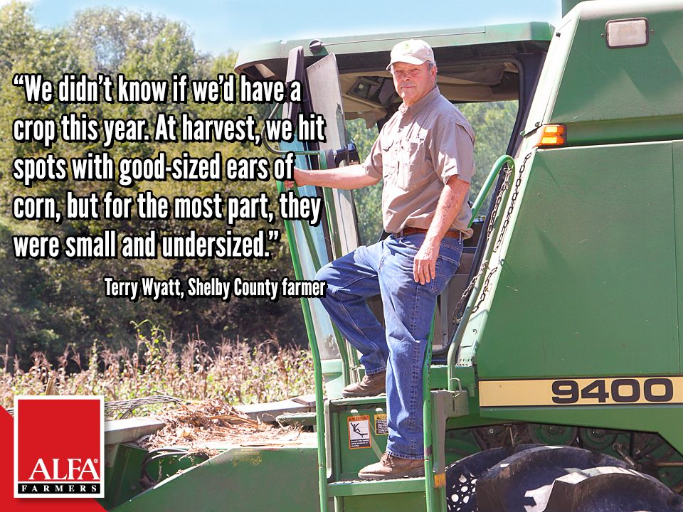 Shelby County farmer Terry Wyatt Shelby county, Farmer