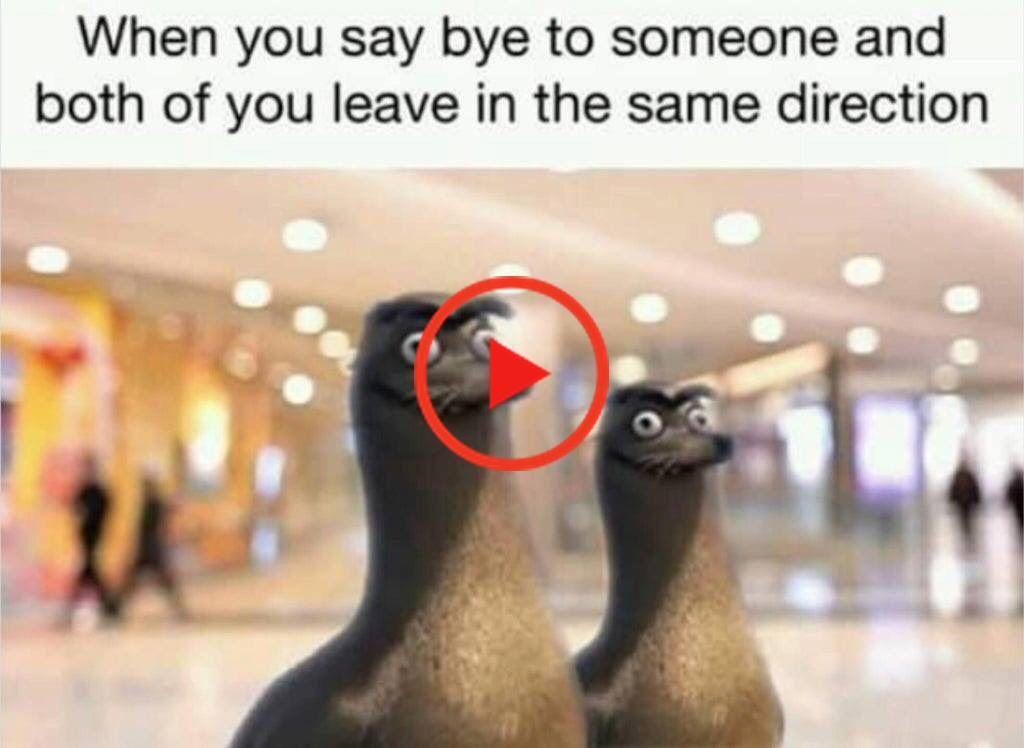35 Frais Memes Pour Vous Garder Rire Memes Fresh Memes Funny Memes