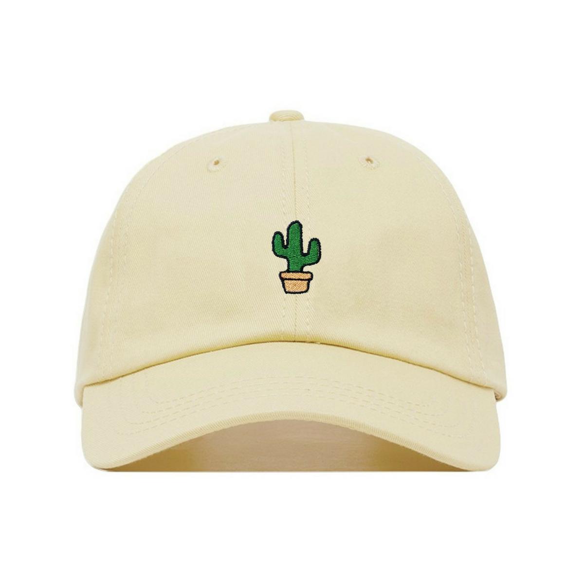 e0ad973a765 Cactus in 2019