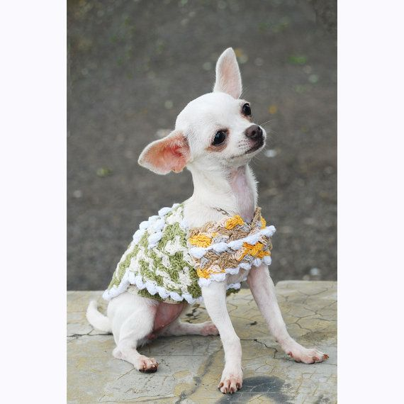 Chihuahua clothes unique crochet dog clothes rustic by - Dog clothes for chihuahuas ...