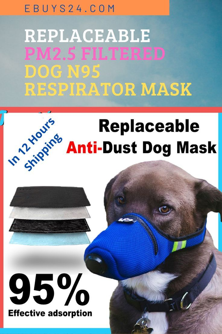 Replaceable PM2.5 Filtered Dog n95 Mask Respirator Dogs