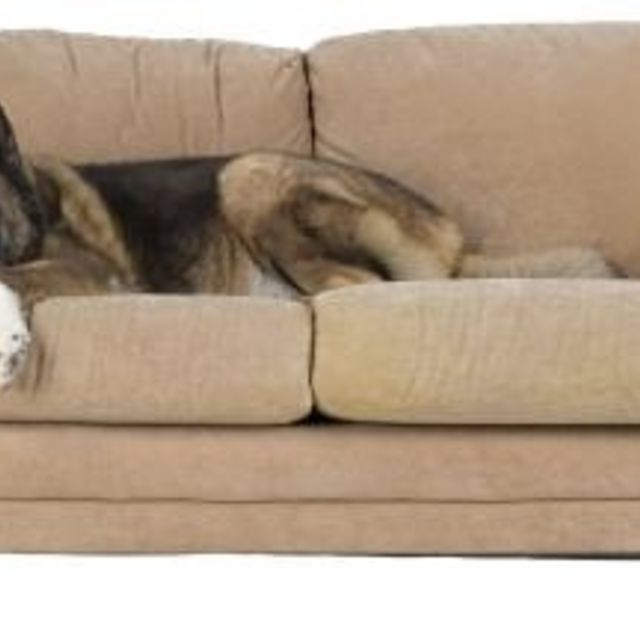 How To Steam Clean A Microfiber Couch Without Leaving Water Stains