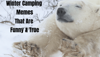 27 Camping Memes That Will Make You Want To Go Camping ...