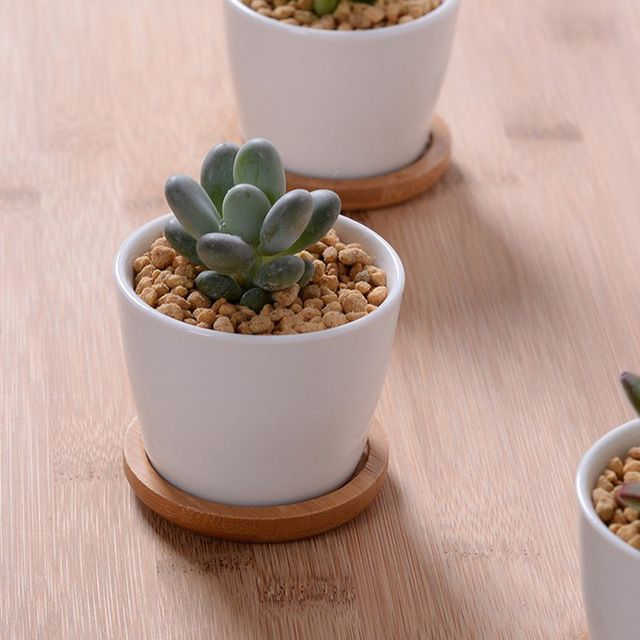 Indoor White Ceramic Plant Pots Crafts Pottery Planters With