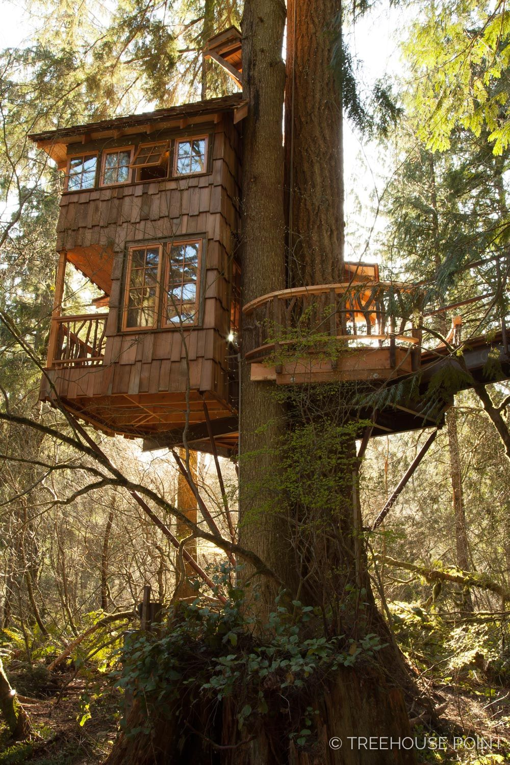 The Burl at TreeHouse Point — Nelson Treehouse