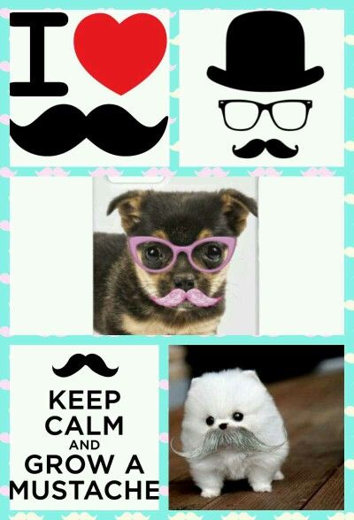 I  <3 mustaches