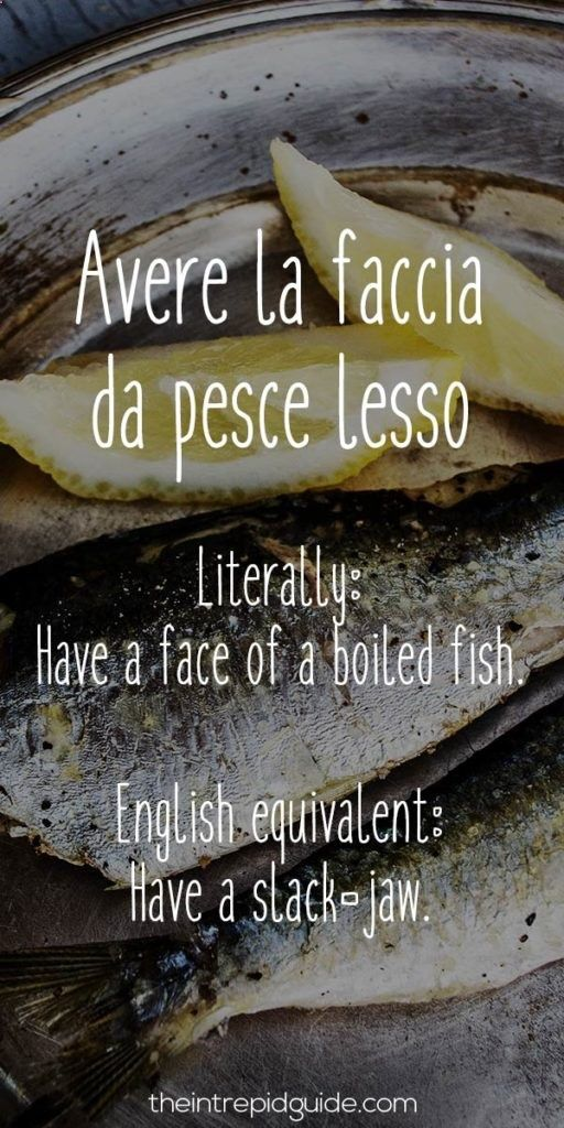 Funniest Italian Sayings: 26 Food-Related Insults You Wont Forget