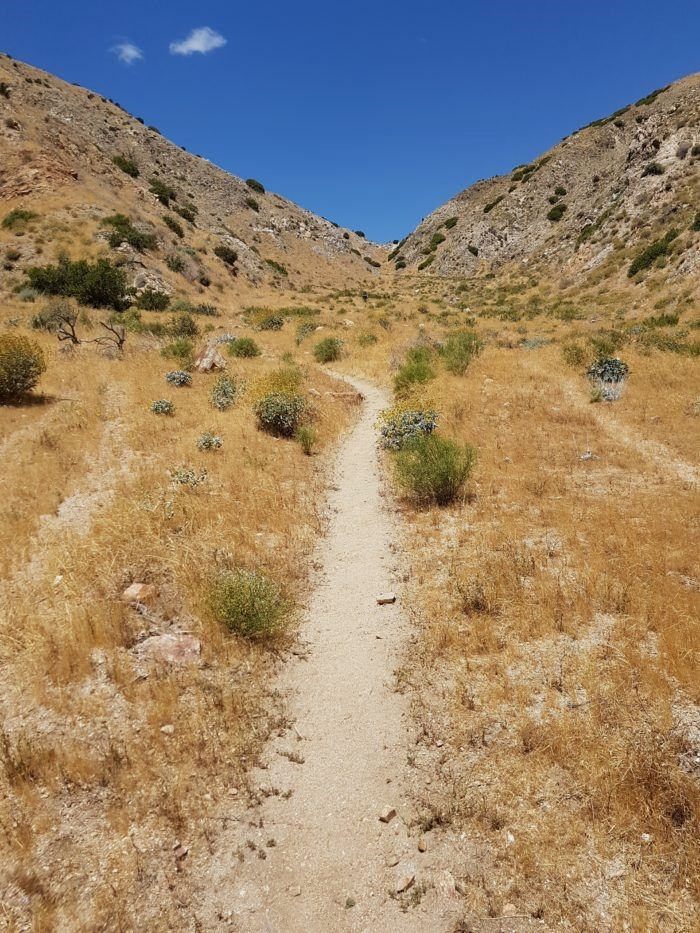 Leaving the #Trail Isn't Any Easier https://thetrek.co/pacific-crest-trail/leaving-trail-isnt-easier/ #wildlife animals #lake