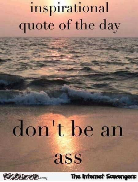 22 Funny Sarcastic Inspirational Quote Of The Day Funny Quotes Inspirational Quotes Humor