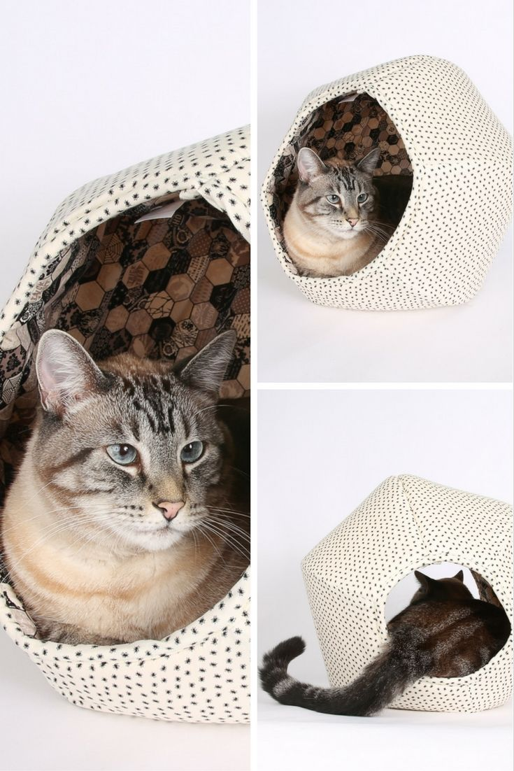 The cat ball cat bed is made here in a spooky spiders - Bed made of balls ...