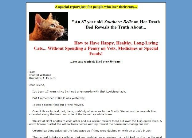 Cat Health Secrets With Images Cat Health Dog Food Online