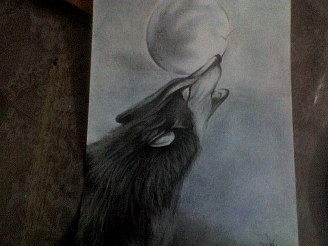Dibujo de un lobo a lapiz  Imagui  lucca  Pinterest  Lpiz