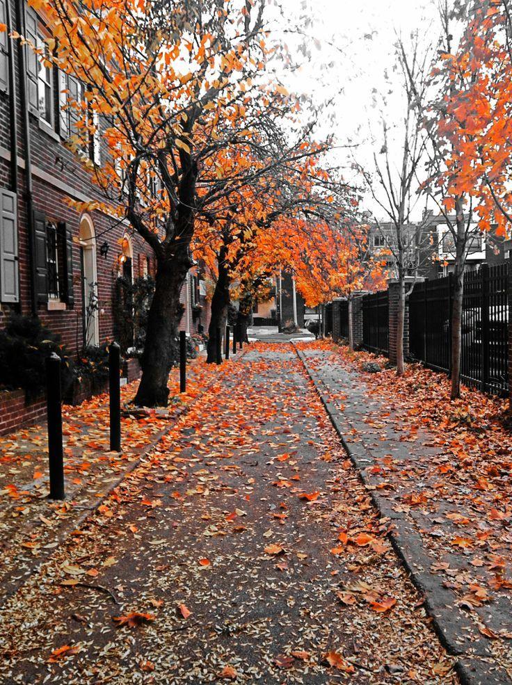 philadelphia fall Осенний пейзаж, Пейзажи, Осенние