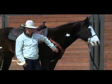 Julie Goodnight: When to use a breast collar on your saddle (Circle Y)
