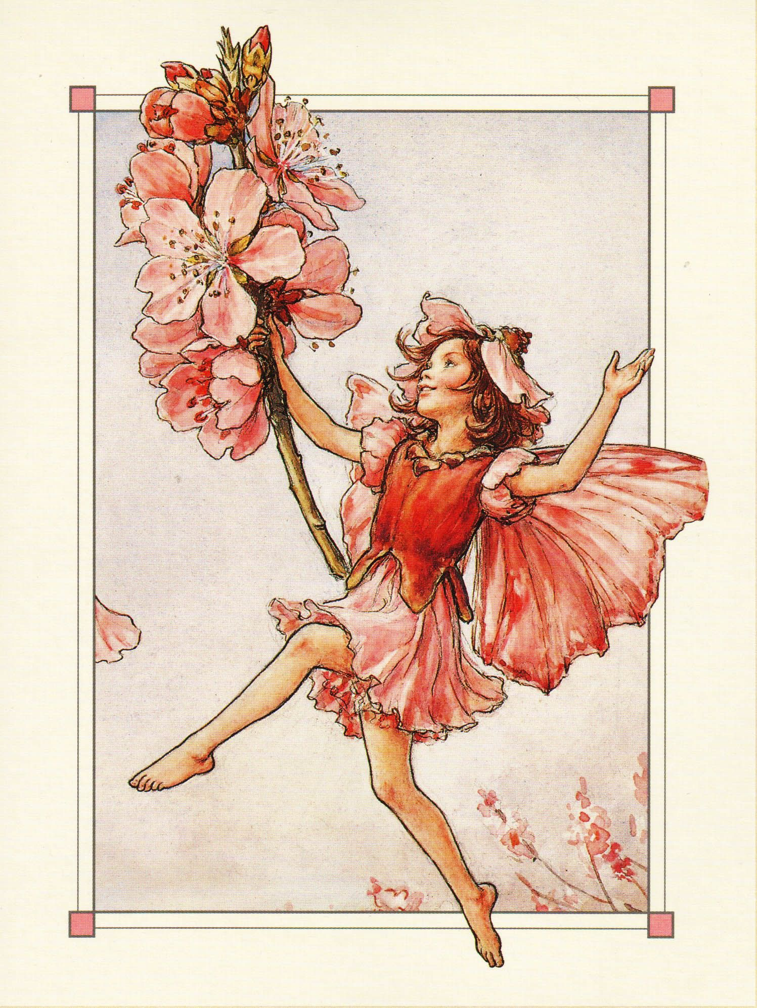 Новогоднюю, открытках сесиль баркер