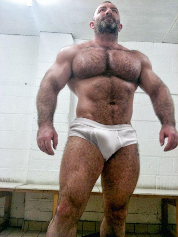 Hairy Men Bears