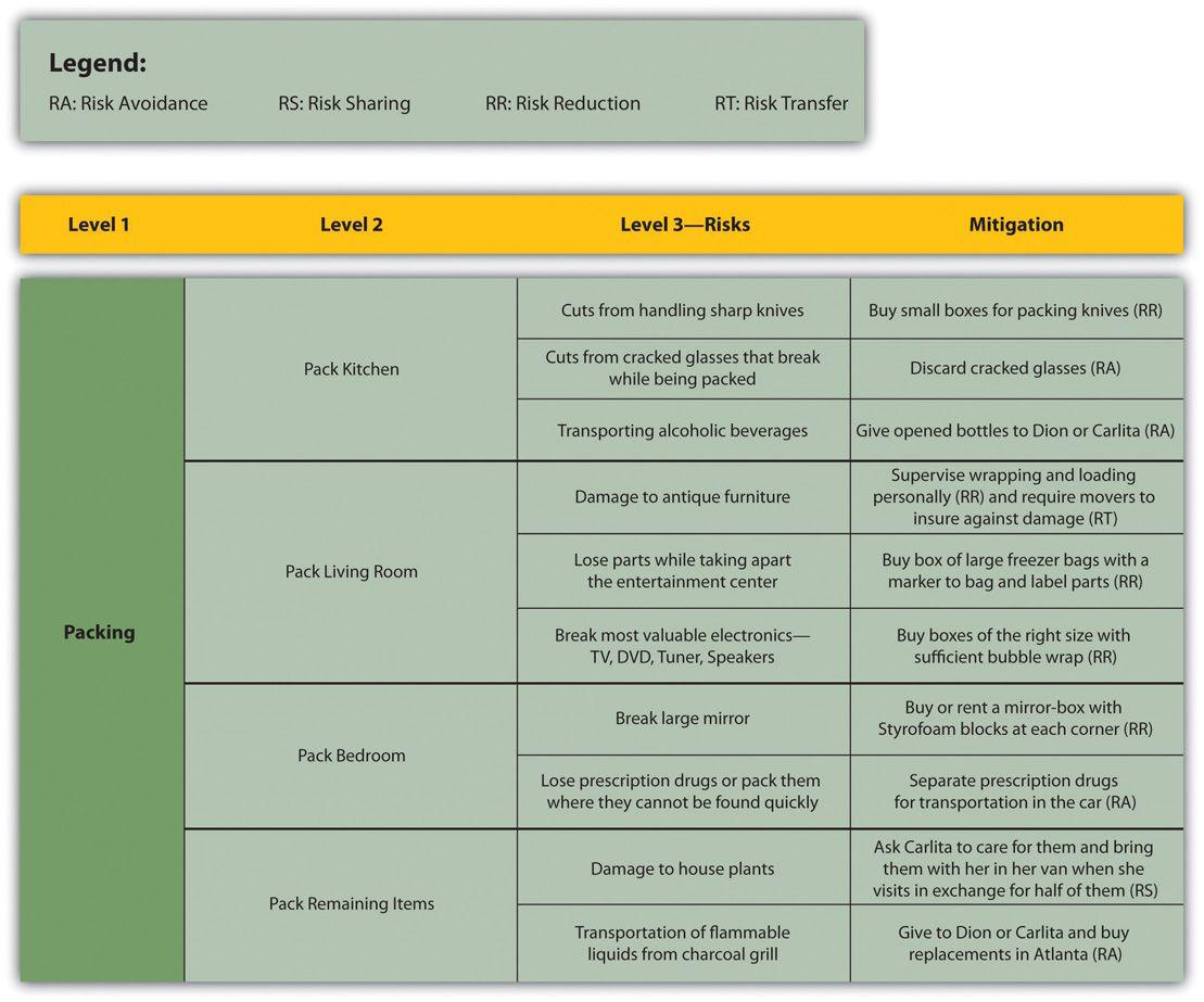 Project Risk Management Plan Template Risk Management Plan