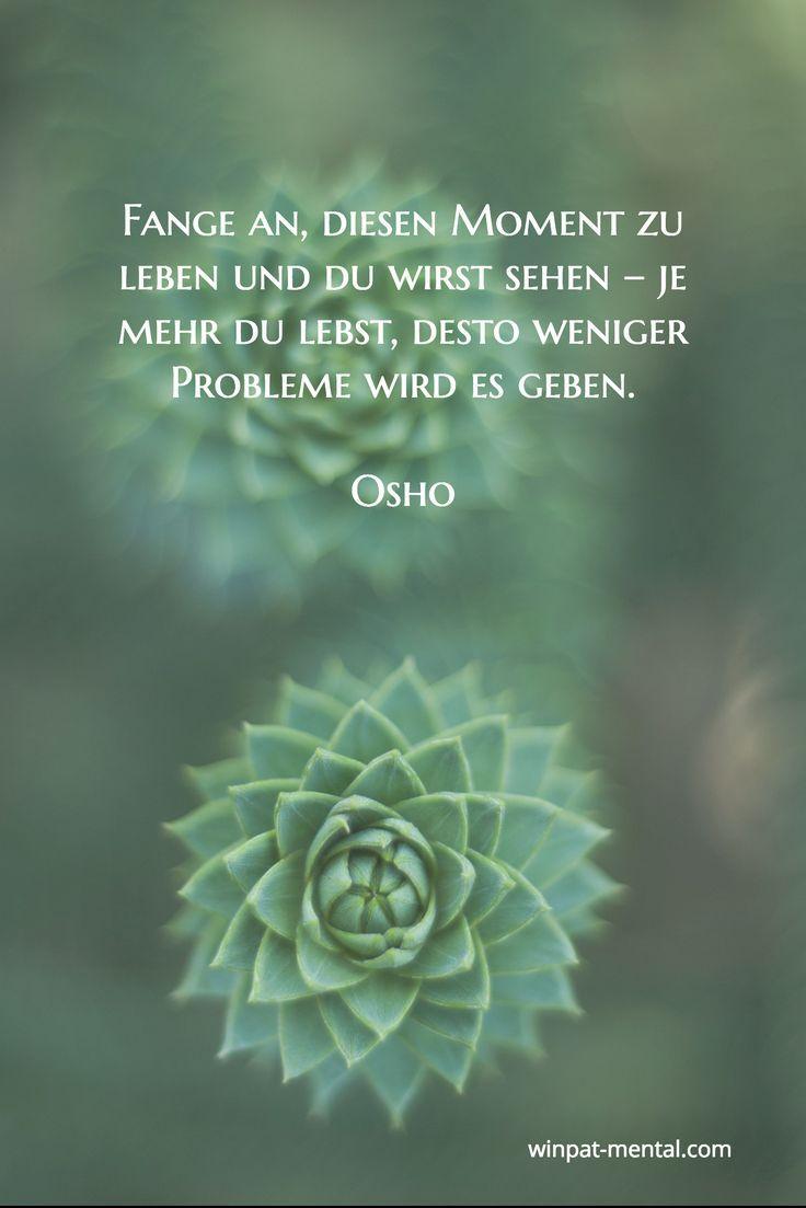 Coaching Training Mehr Herz Weniger Kopf Mindfulness