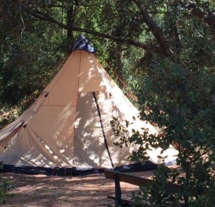 Une vraie tente de compétition à l'ombre des pins... C'est