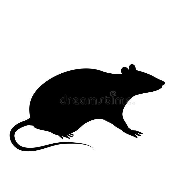 Silhouette Of The Rat Or Mouse Is Sitting On A White Background The Black Silho Affiliate Sitting White M Rat Silhouette Shadow Art Silhouette Vector