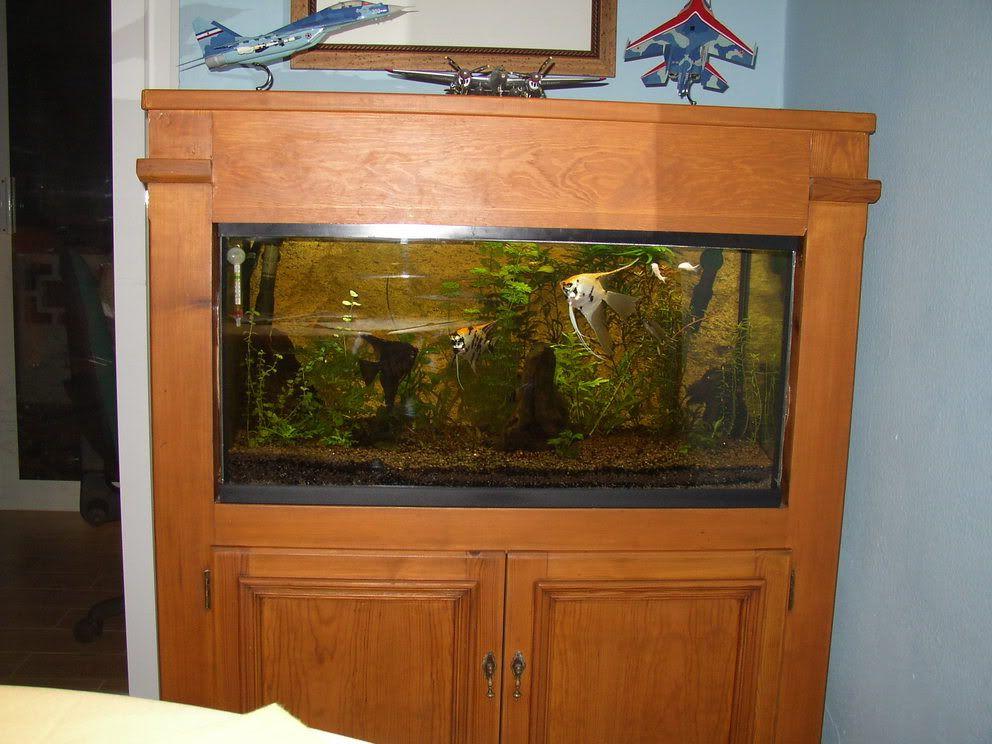 Mueble pecera buscar con google madera pinterest for Mueble acuario