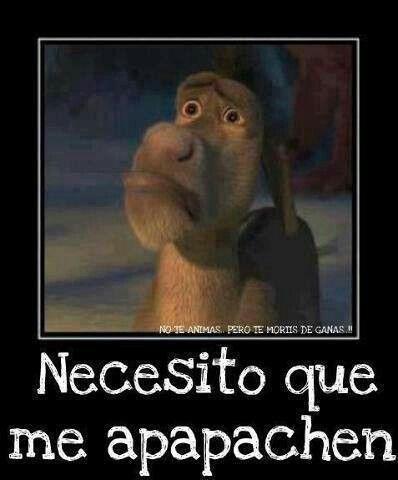 Pin By Margarita Delgado On Palabras Bonitas Je Je I Need A Hug Need A Hug Shrek