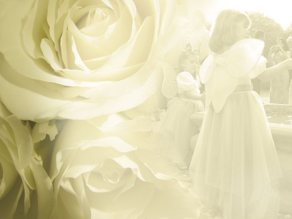 wedding powerpoint backgrounds