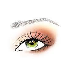 easy full face  beginner makeup tutorial  makeup
