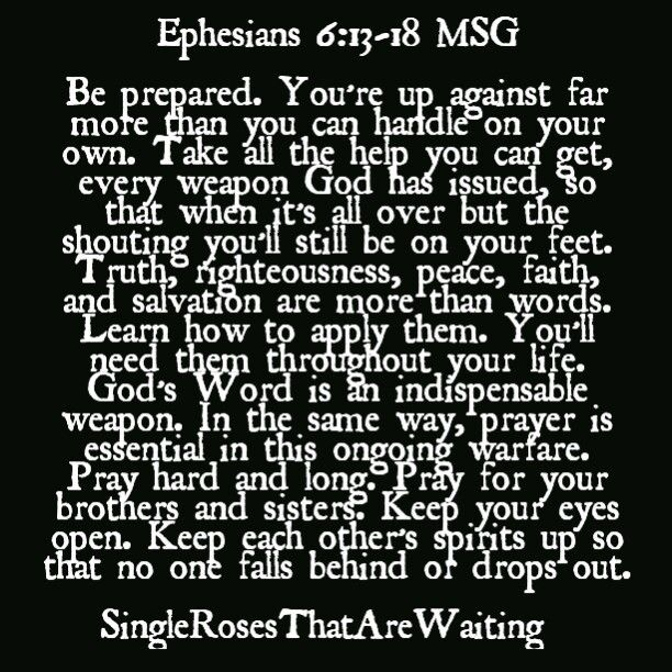 Everyday you must have your armor on. There is no need to fear this life. Be prepared and ready.  SingleRosesThatAreWaiting