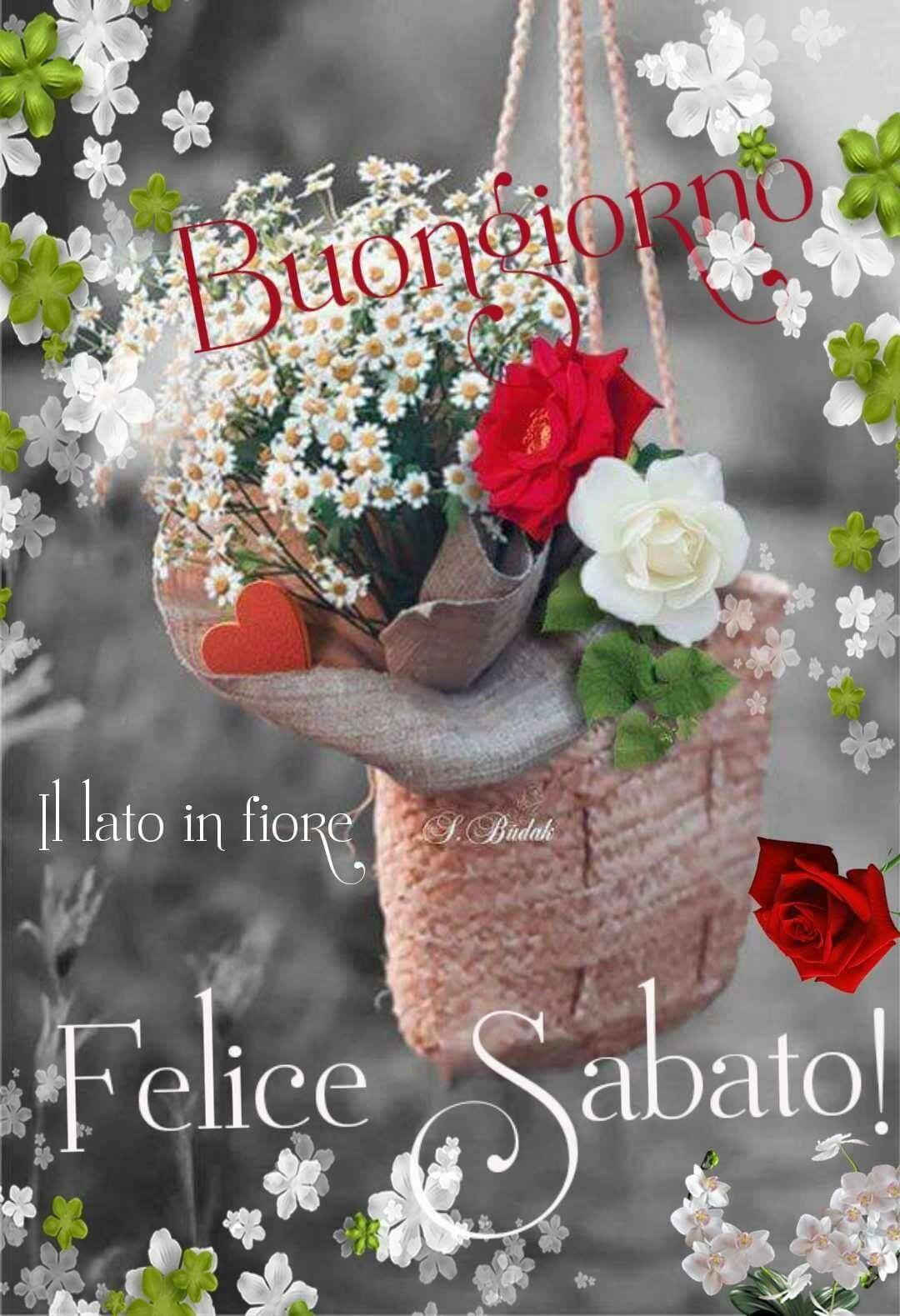 Buongiorno Buon Sabato Buongiorno Sabato Sabato E Buongiorno