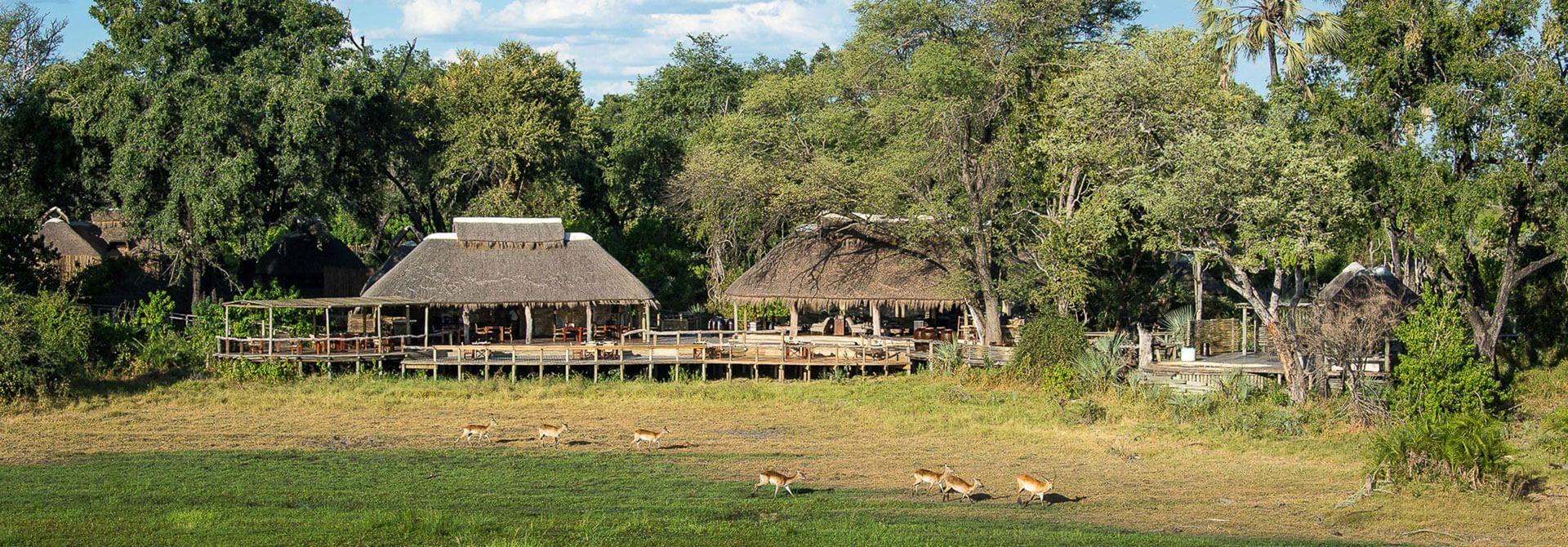 21++ Moremi game reserve campsites inspiration