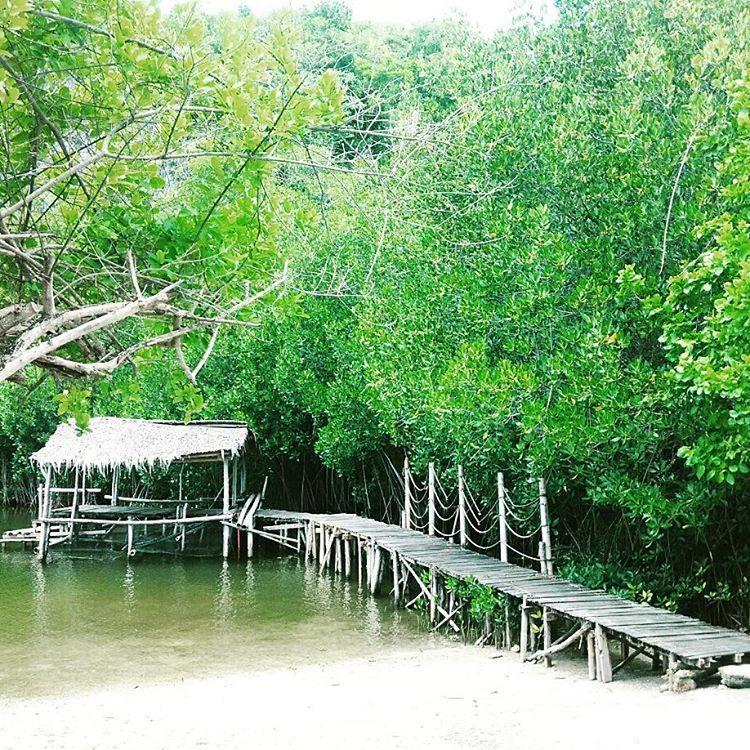 A natural teeming lagoon you can find in this 24 hectare coral island. Go kayaking or fishing using line and hook.  #lnctravels #sumilonisland #oslob #cebu #tgif #travelgram #bestoftheday #travelgram #backpacker #weekend #islandlife #beachlife #greens #nature #SmartFreeIG #SmartLife