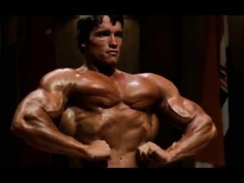 Motivational Video Arnold Schwarzenegger Who Do You Want